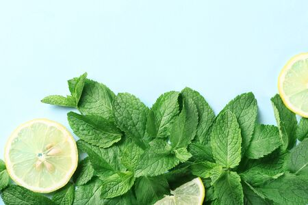Mint leafs with lemon slices on blue background Stock Photo