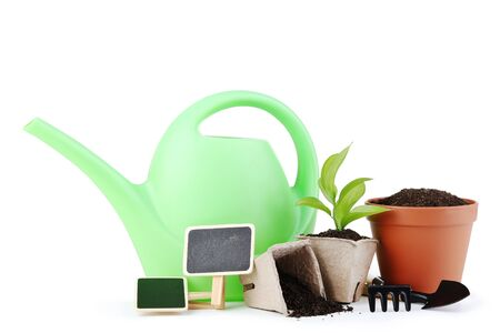 Garden tools with young green plant isolated on white background