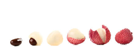 Tasty lychee in a row isolated on white background