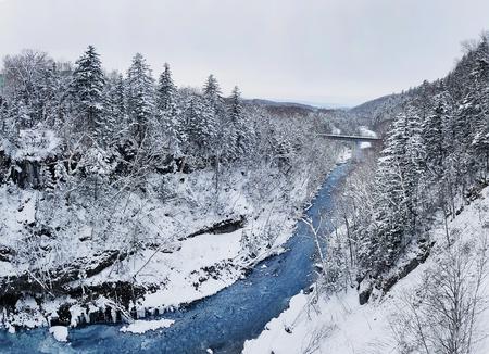 winter landscape 写真素材