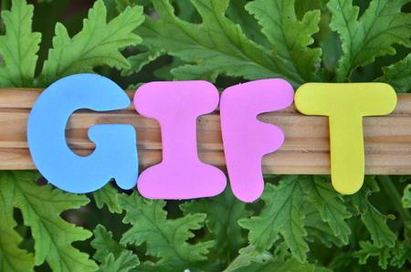 WORD GIFT
