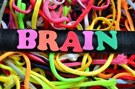 Brain word