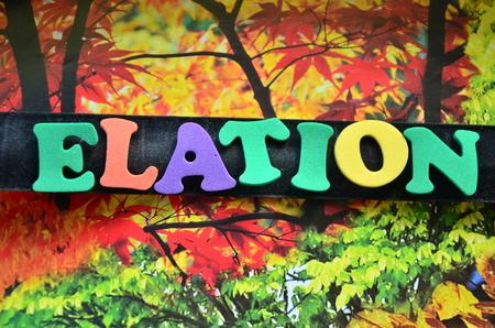 word elation Stock Photo
