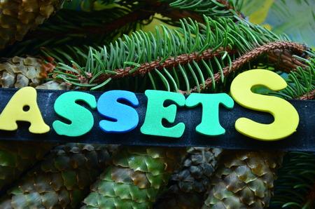 Word assets Stock fotó