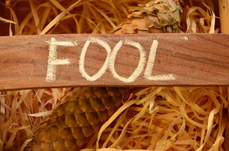 word fool