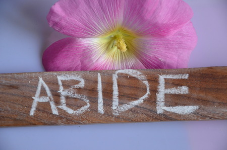 Abide WORD Stock Photo