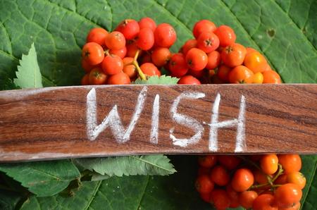 Word wish