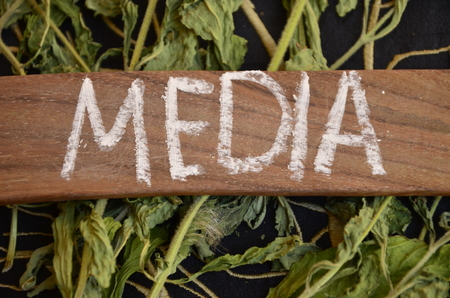 WORD MEDIA Stock Photo