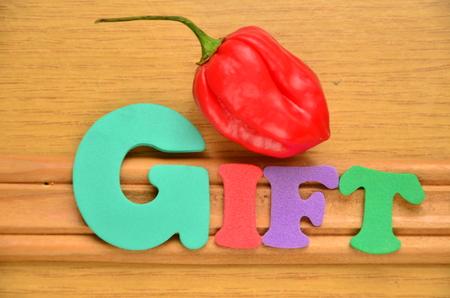 word gift Standard-Bild - 102440957