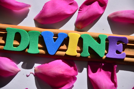 word divine