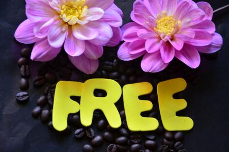 WORD FREE Stockfoto