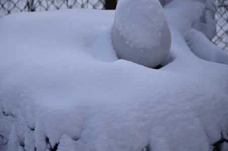 winter landscape Banque d'images