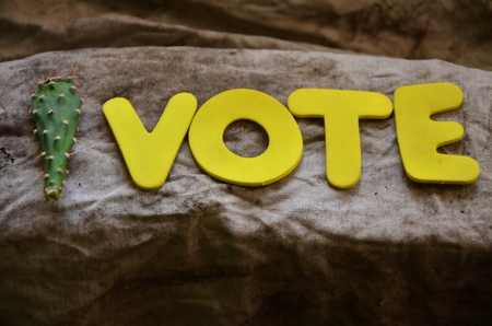 word vote on an abstract background 写真素材 - 104214962