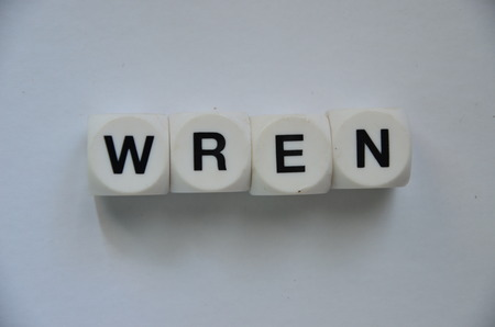 wren word on an abstract white background