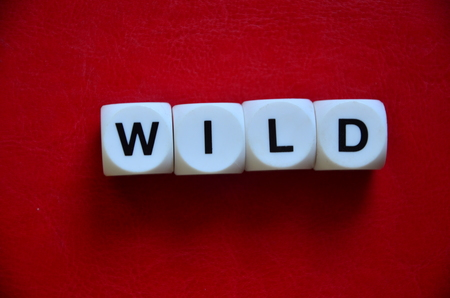 word wild on an red background Stock Photo