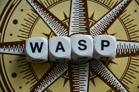 word wasp Standard-Bild