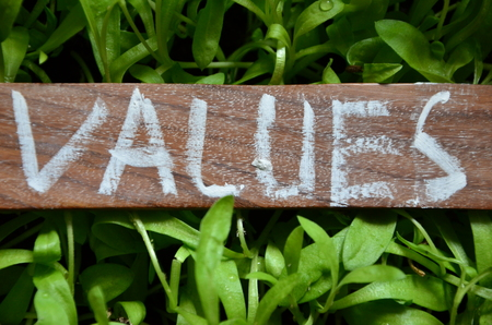 word values ??on an abstract green background Stock Photo