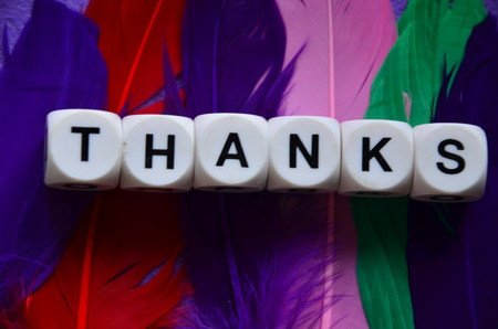word thanks on colourful feathers