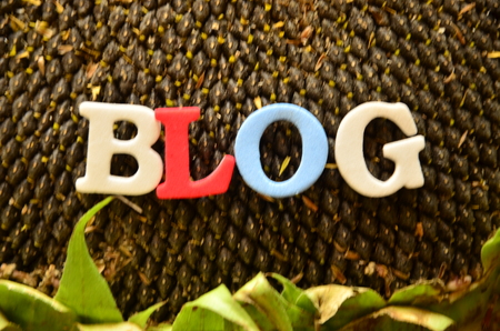 Word BLOG on an abstract background