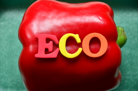 word eco on an abstract background
