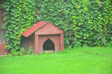 A dog house on the green field outdoors