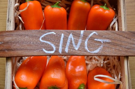 word sing on an abstractt background Stock Photo