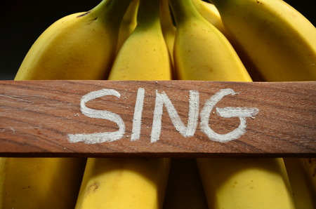 word sing on an abstract background Stock Photo - 108873371