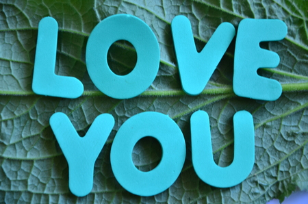 word love you on an abstract background