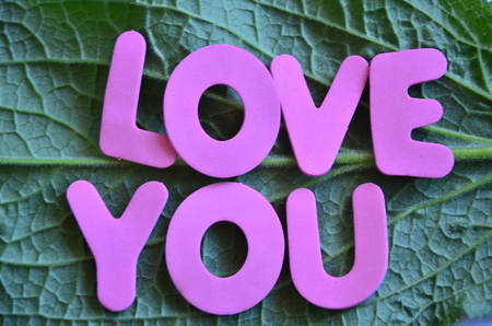 word love you on an abstract background Stock Photo - 109020942