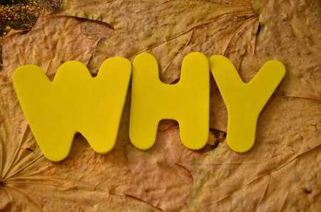 word why on an abstract background
