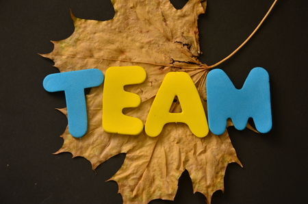 word team on an abstract background