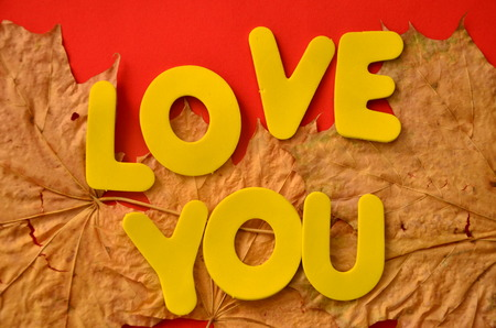 word love you on an abstract background Stock Photo - 110073513