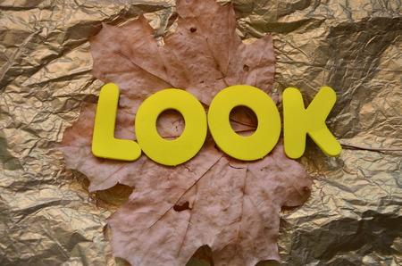 WORD LOOK Фото со стока