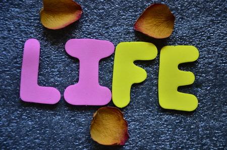 WORD LIFE 版權商用圖片 - 117080899