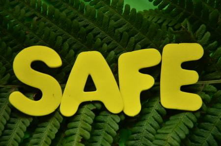 word safe Фото со стока - 117081026
