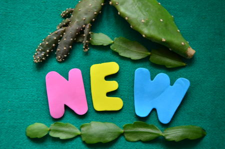 word new
