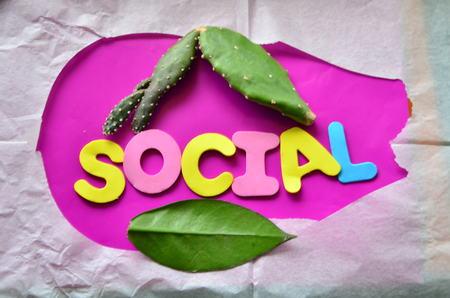 word social