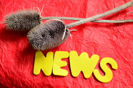 WORD NEWS Zdjęcie Seryjne - 125165014
