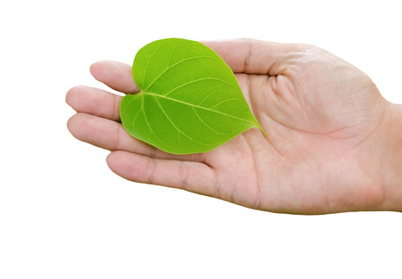 idea concept : save the world with our hands. environmental preservation with our hands photo