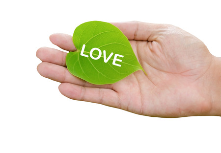 idea concept ECO : love the world with our hands photo