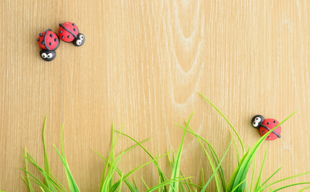ladybug background. space for your text and your creative photo