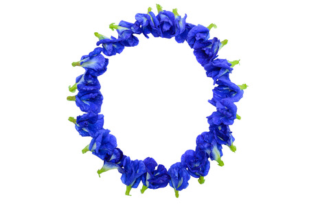 Frame of purple flowers photo