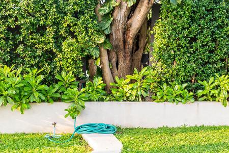 shady: Shady green garden Stock Photo