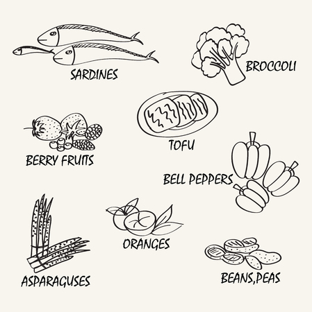 bell peper: Food vector design. Line drawing natural food. Vector hand drawing food elements for education.