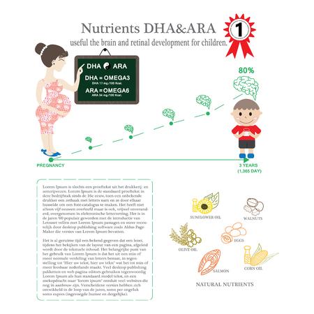 nutrientes: Embarazada. Nutrientes DHA y ARA �til el desarrollo del cerebro y de la retina para los ni�os. Conocimiento Infograf�a para la nueva madre incluye patr�n en el men� de muestras. Nutrientes importantes para los ni�os en crecimiento. Vectores
