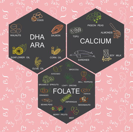 educations: Important  minerals foods DHA ARA FOLATE and CALCIUM for baby and mom. Elements for healthy and educations . Food for pregnancy concept. Hand drawing vector icons graphic design include pattern in swatches menu. healthcare illustration. Illustration