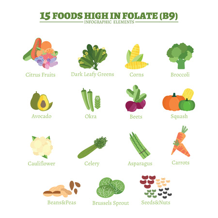 folate: 15 Foods high in folate or vitamin B9 infographic elements. Healthcare concept flat design.