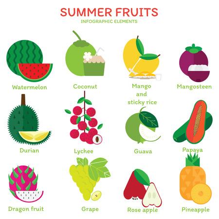 Colorful of summer fruits flat illustration. Tropical fruits vector design.