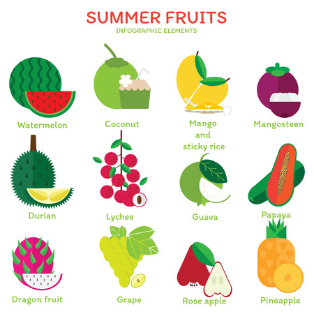 king thailand: Colorful of summer fruits flat illustration. Tropical fruits vector design.