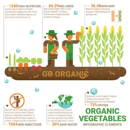 Gezonde voeding biologische groenten infographic plat design. Kennis gezonde voeding concept. Teelt. Landbouw. Biologische landbouw. Biologische landbouw. Veilige omgeving. Wereld voedsel. Vector Illustratie